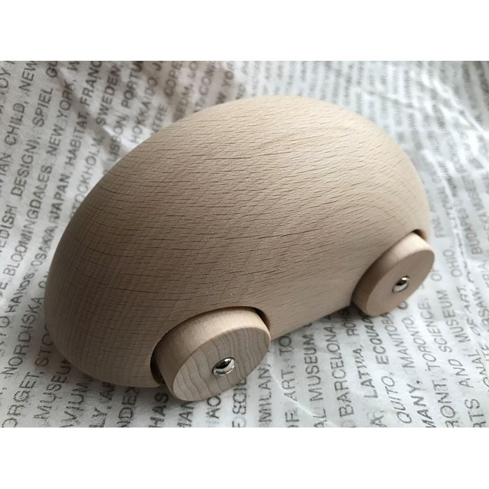 Streamliner wooden nature car